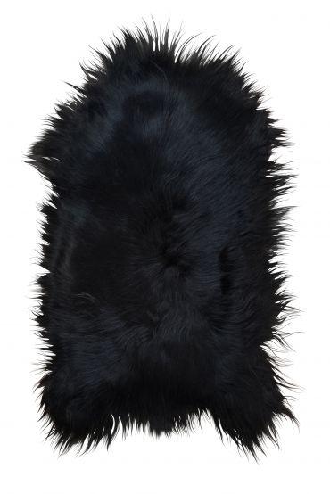Islandfell schwarz/braun 100-110 cm