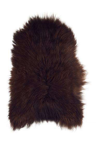 Islandfell braun 100-110 cm